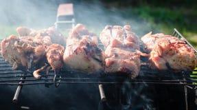 肉被烤在煤炭 免版税库存照片