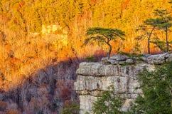 肉食休息处,秋天小河秋天国家公园,田纳西 免版税库存图片
