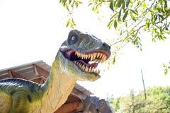 肉食鸟恐龙 图库摄影