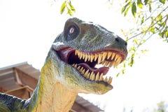 肉食鸟恐龙 免版税库存照片
