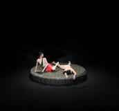 肉putuan现代芭蕾:中华的金莲花 免版税库存图片
