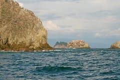 肋前缘海洋太平洋rica 免版税库存照片