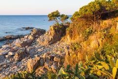 肋前缘的Brava沿海道路游人 库存图片