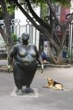 肋前缘肥胖jose rica圣妇女 库存图片