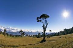 肋前缘irazu nacional volcan parque的rica 免版税库存照片