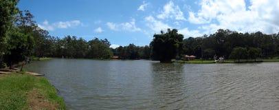 肋前缘jose国家公园池塘rica圣 库存图片