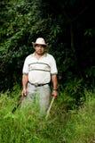肋前缘rican现有量的大农场 免版税图库摄影