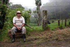 肋前缘rican现有量的大农场 免版税库存照片