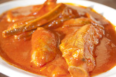 肋骨和香肠在西红柿酱 库存图片