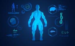 肌肉人分析 免版税库存照片