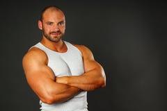 肌肉人纵向 免版税库存图片