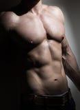 年轻肌肉人躯干 免版税库存照片