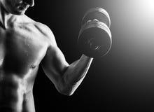 肌肉健身人-有哑铃的爱好健美者 免版税库存照片