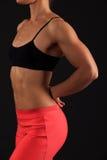 肌肉女性身体 免版税图库摄影