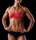 肌肉女性身体 免版税库存照片