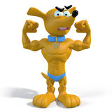 肌肉小狗 免版税图库摄影