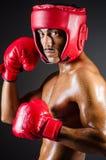 肌肉拳击手在工作室 库存图片