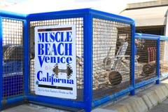肌肉海滩,威尼斯,加利福尼亚 免版税库存照片