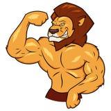 肌肉狮子摆在 库存图片