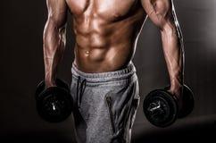 肌肉男性胸腔 库存照片