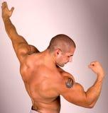 肌肉男性设计 免版税库存照片