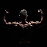 肌肉的机体 图库摄影