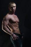 肌肉的爱好健美者 免版税库存图片
