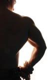 肌肉的爱好健美者 库存照片