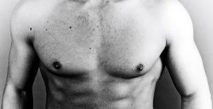 肌肉的胸口 库存图片