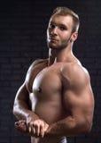肌肉英俊的人 免版税图库摄影