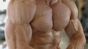 肌肉躯干和胳膊 影视素材