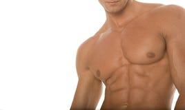 肌肉运动车身制造厂的胸口 免版税库存照片