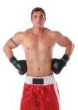 肌肉黑色拳击手的手套 库存照片