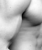 肌肉bicep的人 免版税库存图片