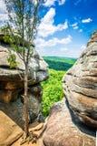 肖尼国家森林的看法从伊利诺伊t `庭院的  免版税库存照片
