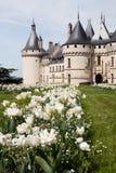 肖蒙城堡  库存照片