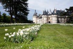 肖蒙城堡  免版税库存图片