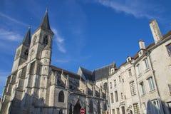 肖蒙法国大教堂  库存照片