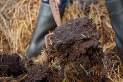 从肥料和秸杆的富有的有机腐土 免版税库存图片