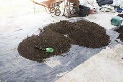 肥料堆 免版税库存照片