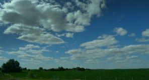 肥沃的农地,乡区的理想的风景 库存图片