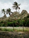 肥沃绿色山谷和坚固性峭壁围拢的棕榈树近干小河在背景中 圣安唐岛, Cabe 库存照片