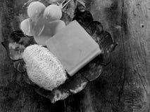 肥皂和温泉 免版税库存照片