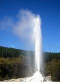 肥皂粉激活诺克斯夫人喷泉 罗托路亚地区,新西兰 库存图片