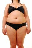肥胖夫人 免版税库存照片