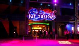 肥胖星期二晚上俱乐部,奥兰多,佛罗里达 免版税库存图片