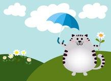 肥胖猫在一明亮的天 库存图片