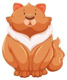 肥胖猫 图库摄影