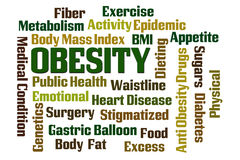 肥胖病 免版税库存图片