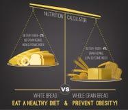 肥胖病Infographics传染媒介 免版税图库摄影